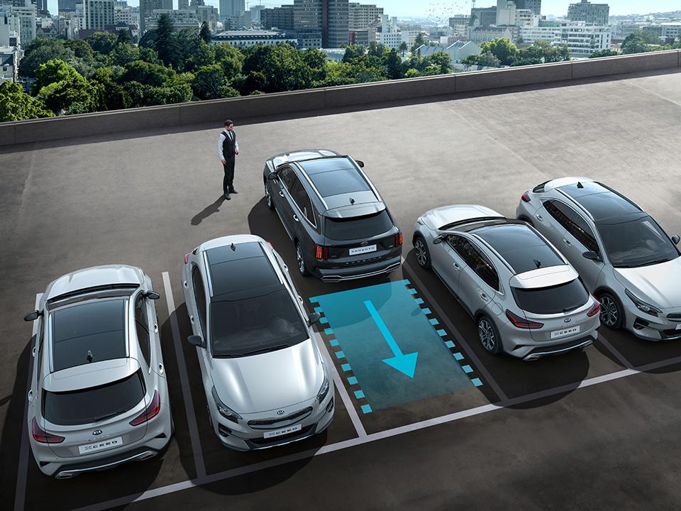 Система удаленной парковки