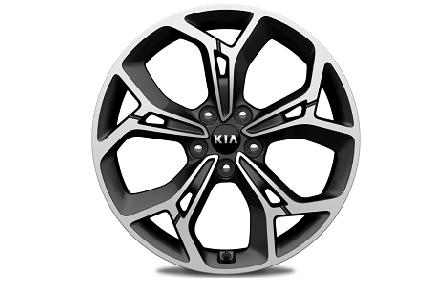 19-дюймовые алюминиевые диски